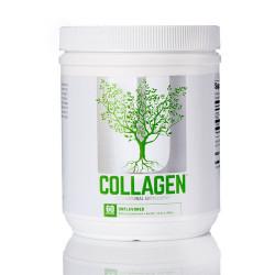 Universal Collagen